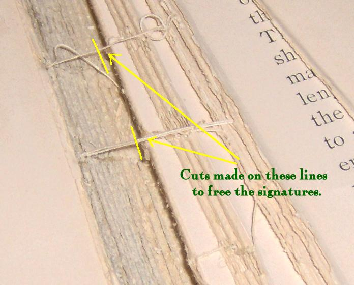 Close view of the threads of the spine.